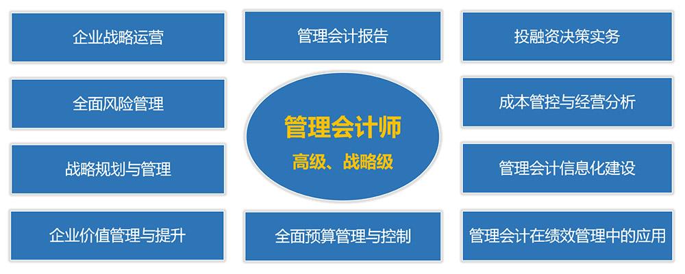 管理会计师(高级、战略级)课程体系